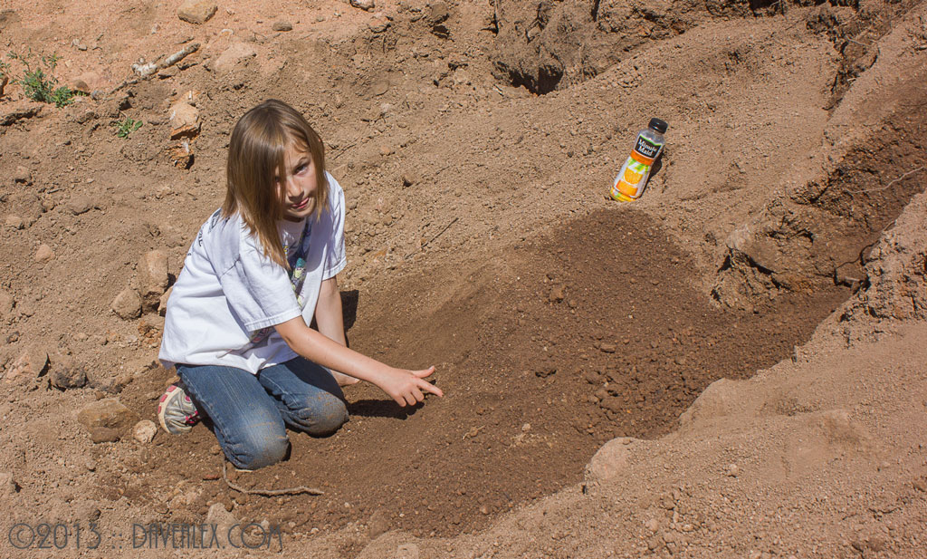 Daphne sifting through the volcano core's dirt...