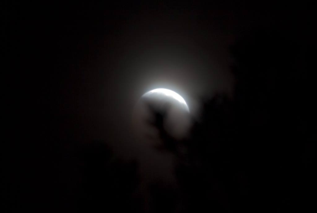 Eclipse ending as the moon set behind the forest of trees