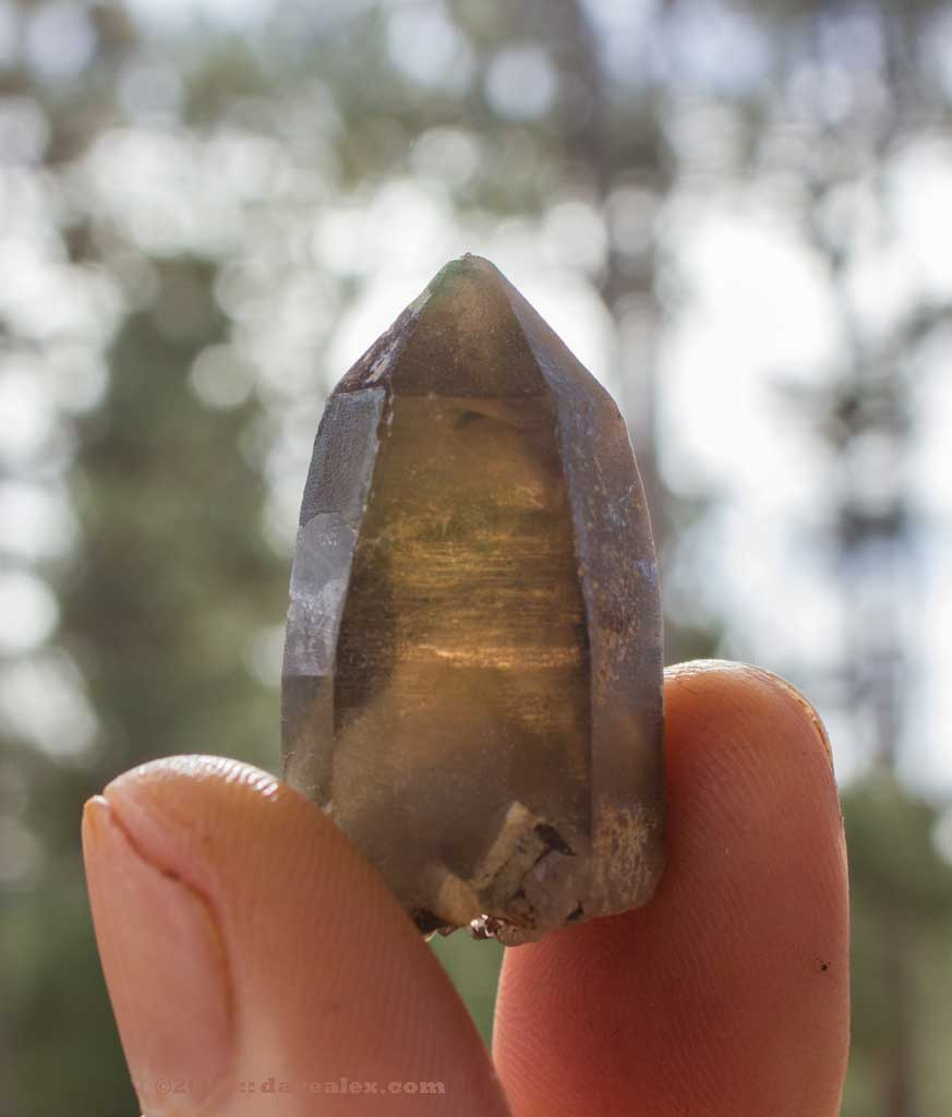 Smoky Quartz with Phantom
