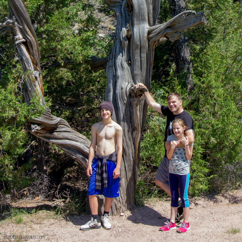 Cool old tree with me and the kids.